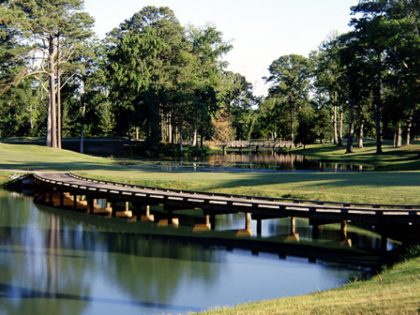 Golf Course Bridge